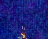 Tarentule au plafond 003