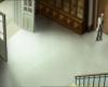 Tarentule au plafond 065