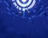 Tarentule au plafond 347