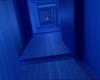 Tarentule au plafond 355