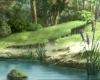 Le lac 235