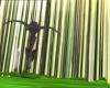 Arachnophobie 093