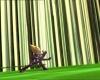 Arachnophobie 258